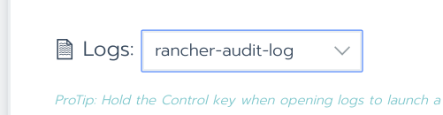 Select Audit Log